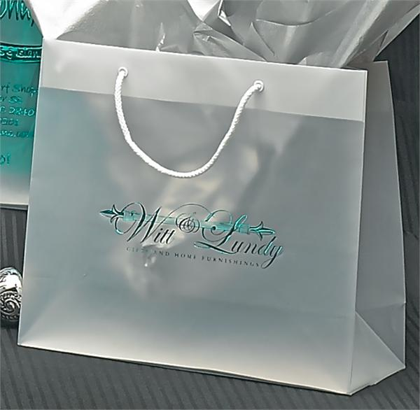 Frosted Clear Plastic Euro Style Bag