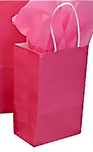 Hot Pink Shopping Bag
