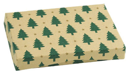 100% RECYCLED Presentation Box for Gift Cards - Little Trees / Kraft