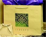 Bamboo Paper Euro Style Soft-Handle Shopping Bag