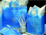 Frosted Clear Plastic Shopping Bag with Loop Handles - Blue Ocean