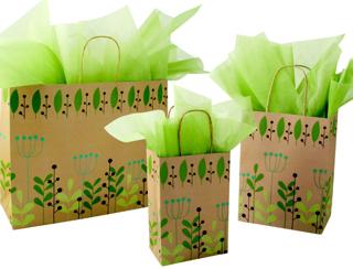 Leaves & Berries Printed Kraft Bag