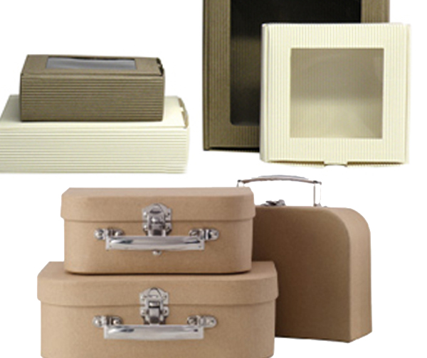 Eco Reusable Boxes