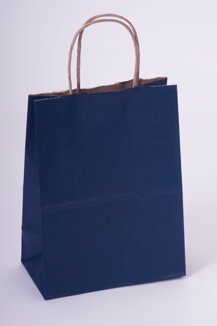 Navy Tint Shadow Stripe Kraft Paper Shopping Bag