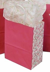 Kraft Paper Shopping Bag with Printed Sides - Pink with Cherry Blossom Sides