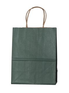 Oatmeal Kraft Paper Shopping Bag with Kraft Paper Handles - Matte Evergreen Tint