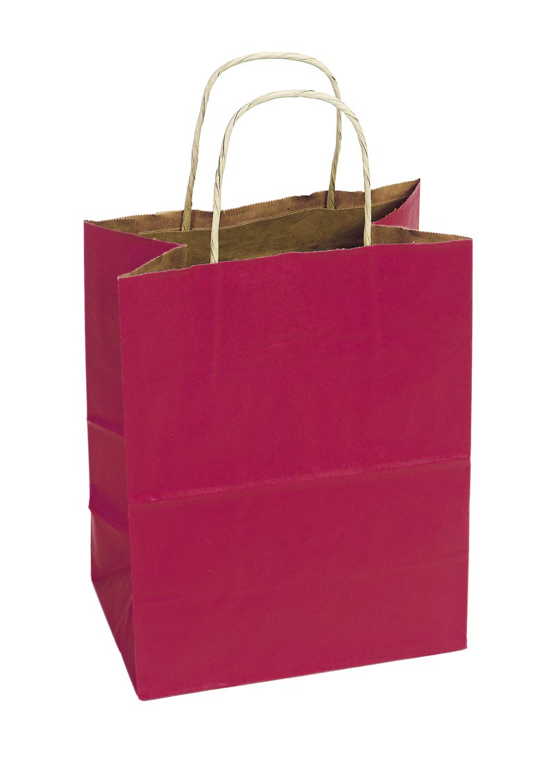 Twisted Paper Handle Shopping Bag - Red Tint