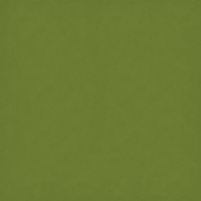 "Aloe Green 20"" x 30"""