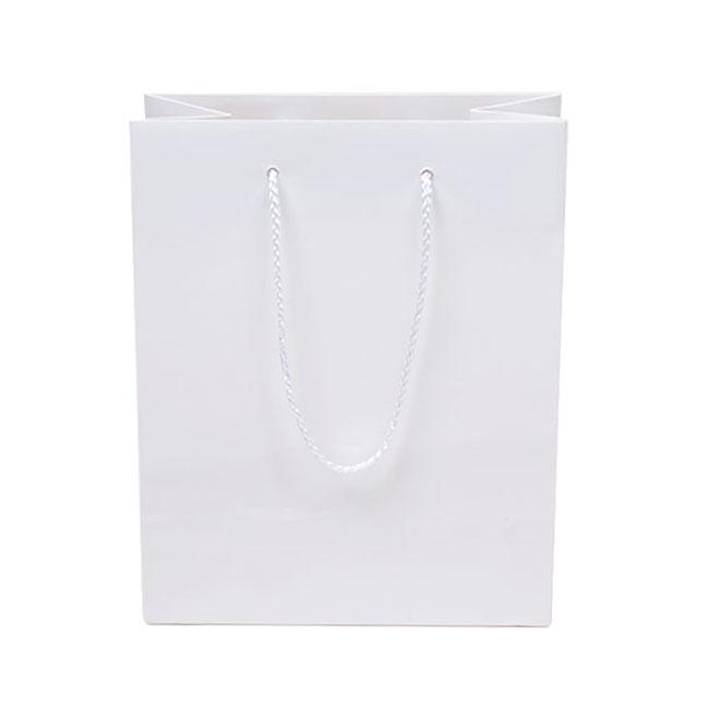 White, Gloss Laminated, Polypropylene Cord Handles - Assorted Sizes