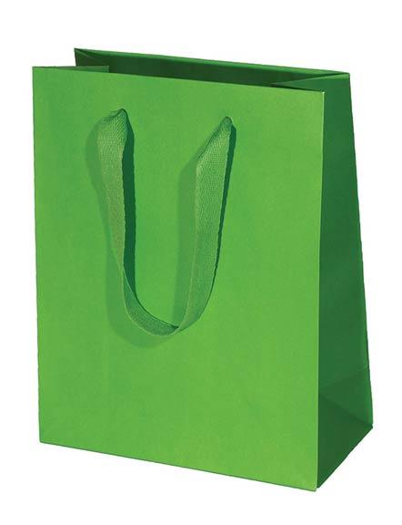 Kiwi Green Kraft Paper Shopping Bag