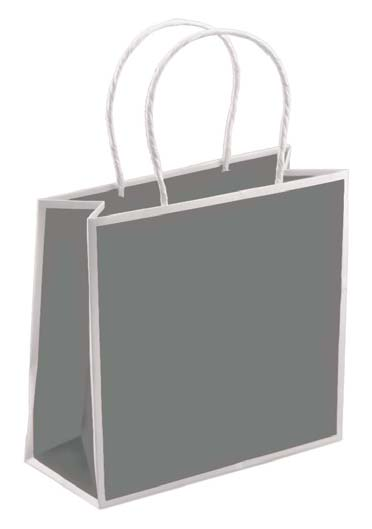 Sophie Shoppers - Slate Gray With White Trim