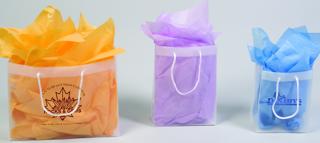 euro style shopping bag, euro tote, plastic euro tote, plastic shopping bag, clear frosted shopping bag